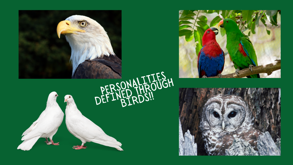 Personality Traits Defined with Birds